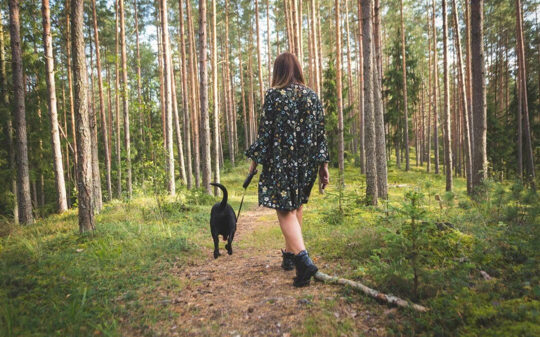 Dbanie i wyrozumiałość wobec siebie w zaburzeniach lękowych